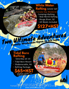 Copy of Travel Packages Flyer